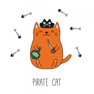 gato pirata kawaii