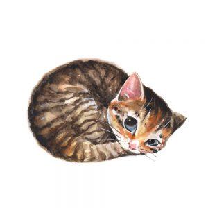 gatos kawaii dibujos