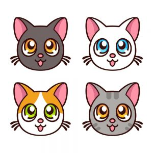 imagenes de gatos kawaii